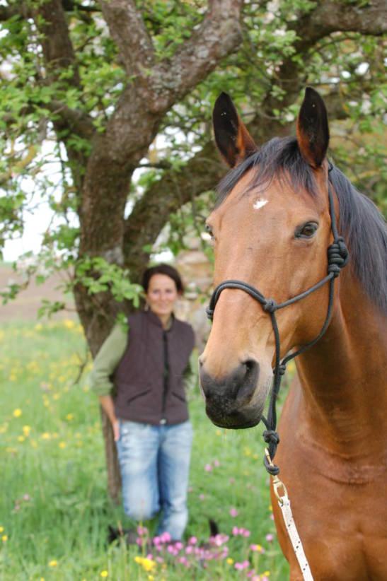 Heike Rundel Pferdeheilpraxis