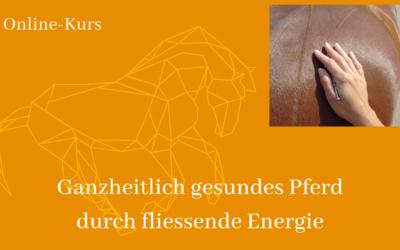 Guter Energiefluss = Gesundes Pferd